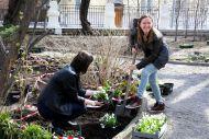 Большой творческий субботник «Весенний сад. Пушкину».